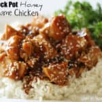 20 - Chef in Training - Crockpot Honey Sesame Chicken