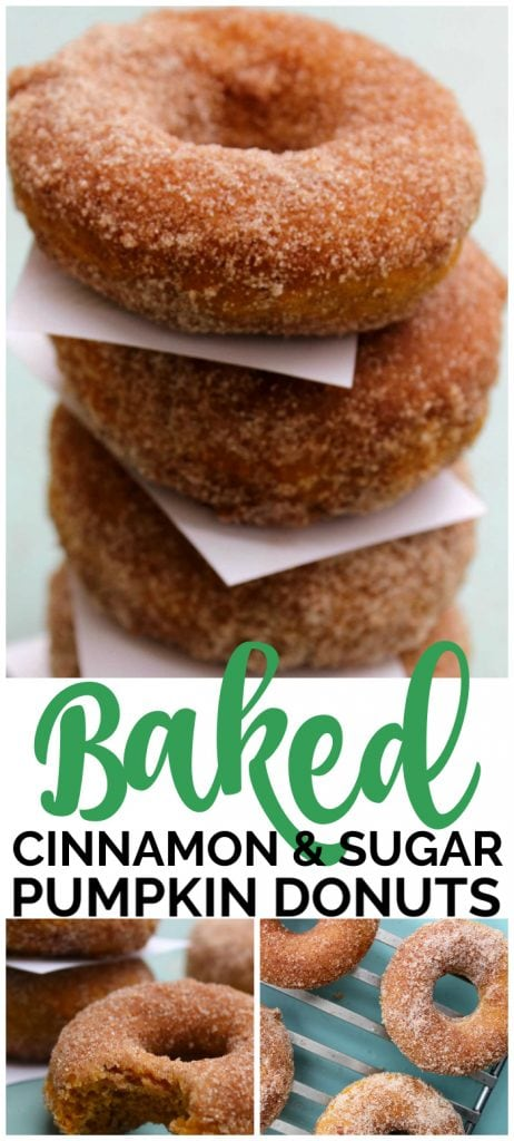 Baked Cinnamon & Sugar Pumpkin Donuts pinterest image