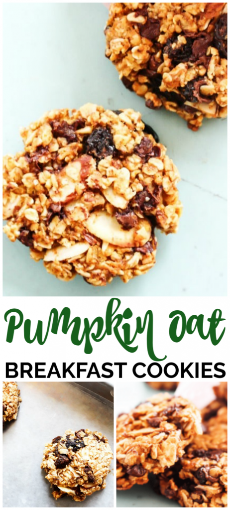 Pumpkin Oat Breakfast Cookies pinterest image