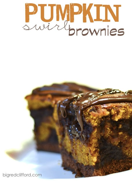 pumpkin-swirl-brownie-lava-cake-recipe