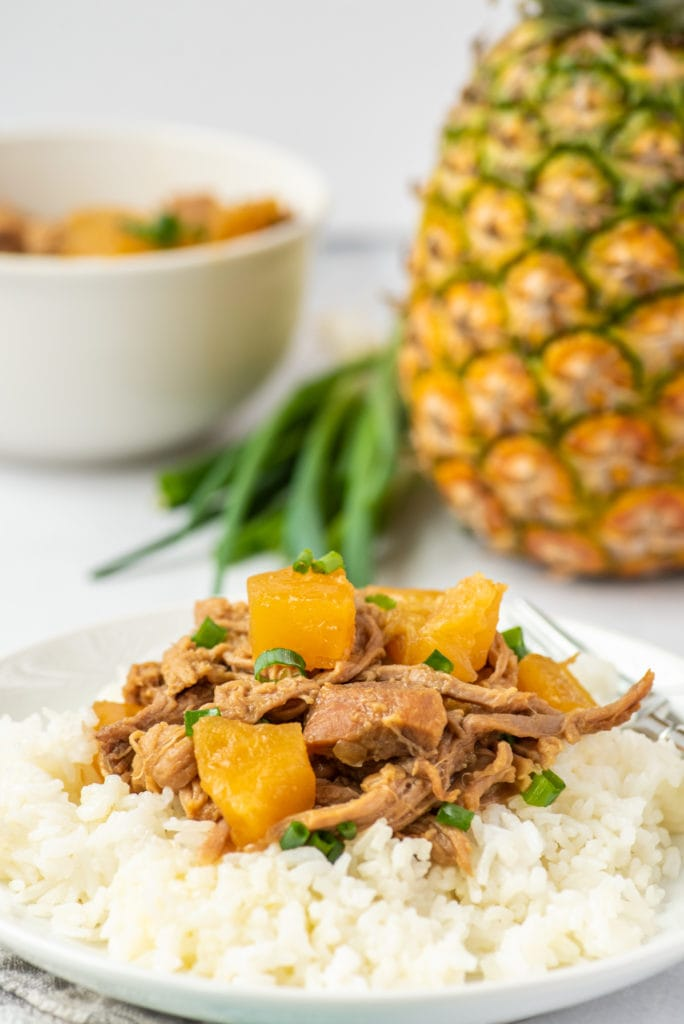 photo of kalau pork and rice on a plate with ingredients in the background