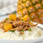 close-up photo of pineapple pork
