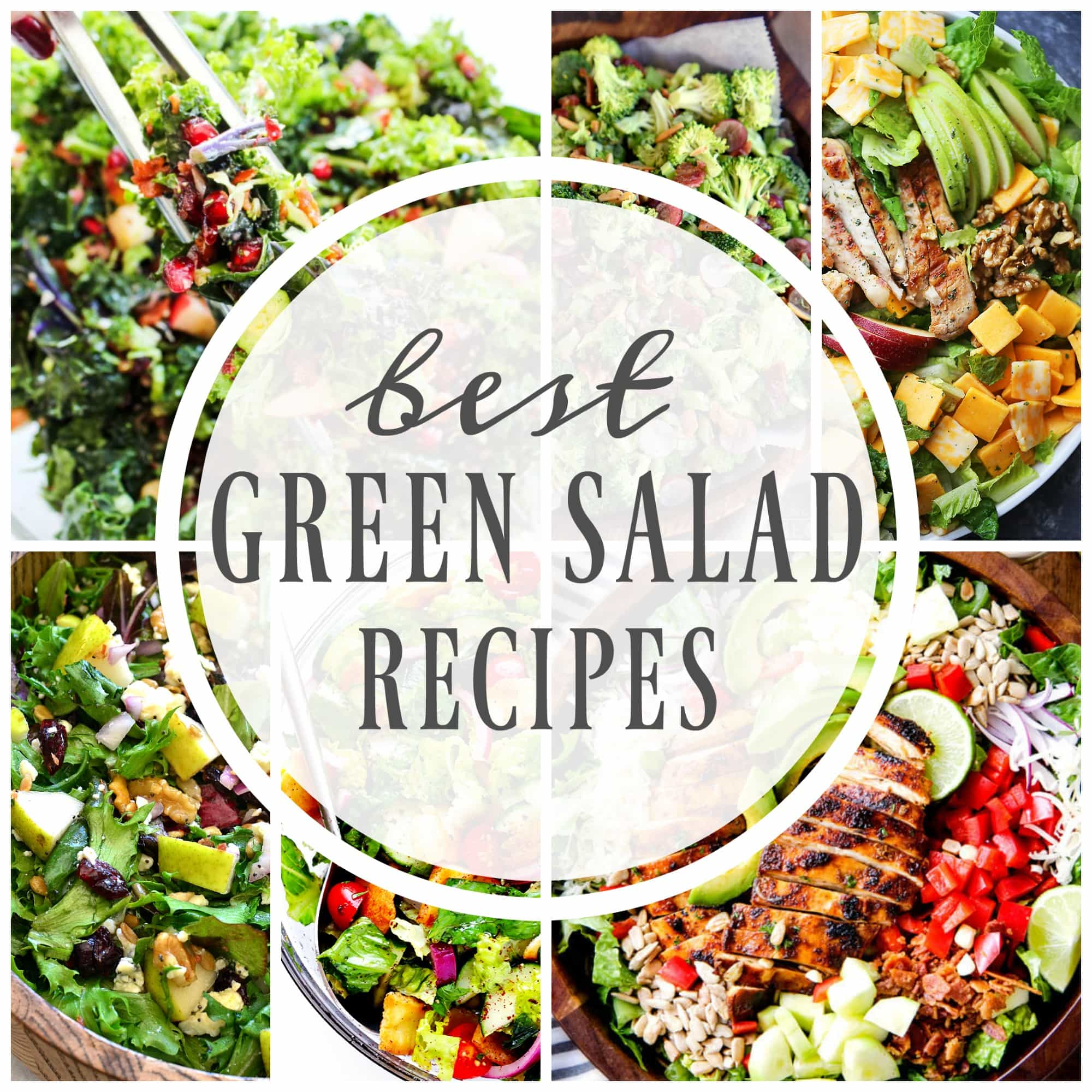 Best Green Salad Recipes A Dash Of Sanity