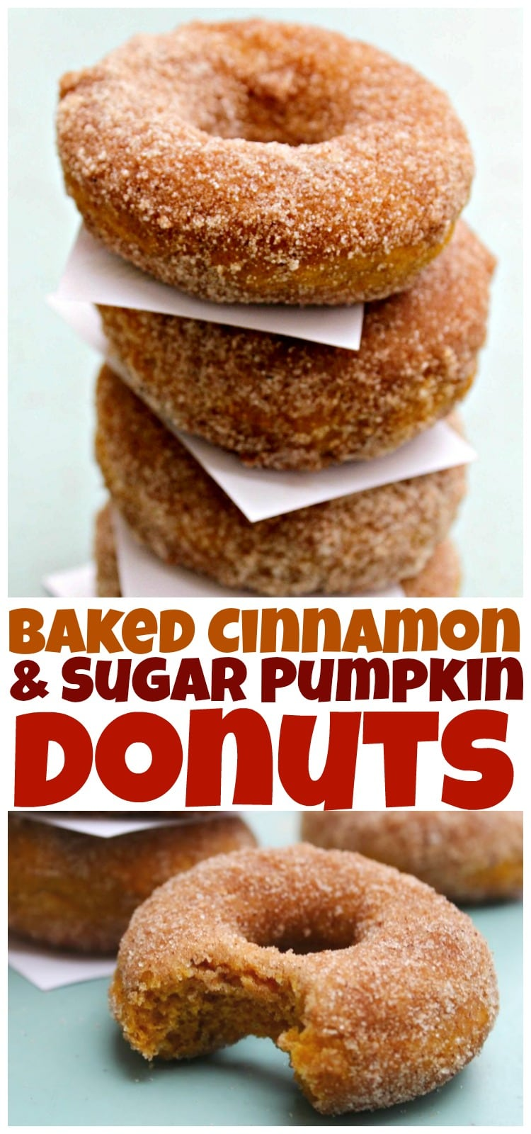 Baked Cinnamon & Sugar Pumpkin Donuts - An easy recipe for baked pumpkin donuts coated in cinnamon-sugar. Best fall treat, of course, next to PSL.