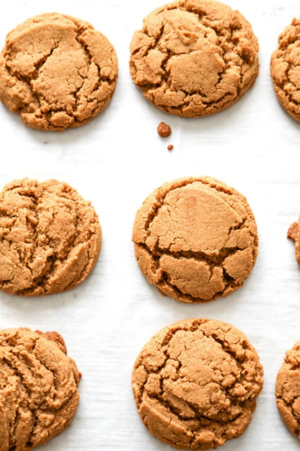 ginger cookies view of 1/2 dozen from the top, laid flat on a surface